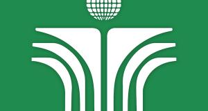 storespecialistinc-green-bg
